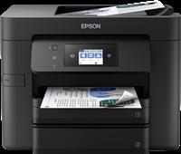 Imprimante Multifonctions Epson C11CG01402