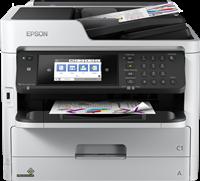 Imprimante Multifonctions Epson C11CG02401